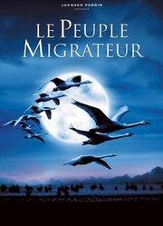 迁徙的鸟:法国导演讲述为生存而飞翔的承诺