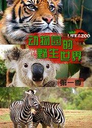 动物园的野生世界 第1季