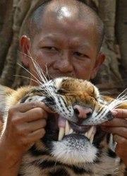 虎与和尚 预告