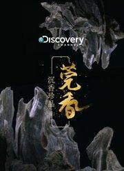 Discovery:沉香珍品 莞香