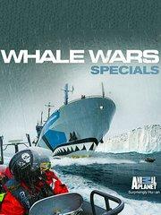 护鲸大战:维京海岸