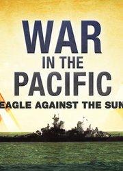 太平洋战争-鹰日之战