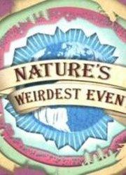 BBC:自然界怪奇事件 第4季 预告