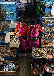 寻访韩国美食之旅