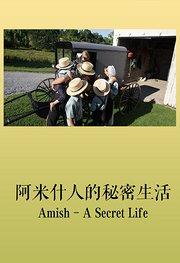 阿米什人的秘密生活