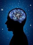 大脑的不同区域各有什么功能