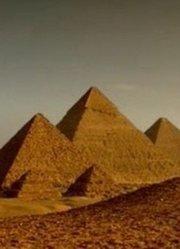 黄金木乃伊的绿洲