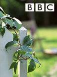 BBC:园丁世界