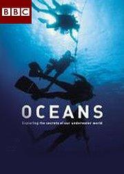 BBC海洋