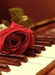 逼死强迫症之钢琴怎么就是校不准