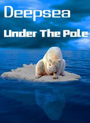 深入极地海洋