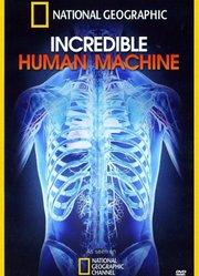 奇妙的人体机器