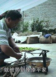 奇葩:蜂蜜+竹筒+茶叶