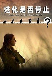 BBC之进化是否停止