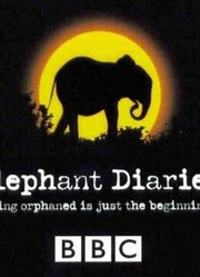 BBC:大象日记第2季