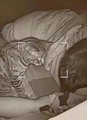 主人长期和猫一起睡,有一天查看监控,发现了诡异画面