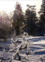 访谈篇 第三集:大使带你看世界—芬兰