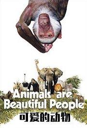 可爱的动物
