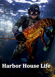 Harbor House Life2016
