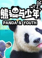 熊猫与少年