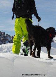《玄冰幻日》 有好友相伴的美妙滑雪之旅