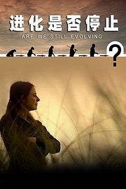 进化是否停止