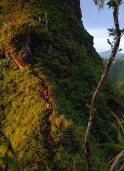 《普玛卡》| 放下一切 去天堂大溪地攀岩探险