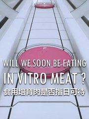 食用培育肉是否指日可待