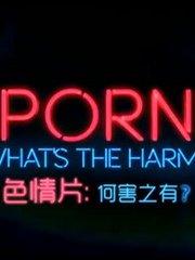 色情片:何害之有?