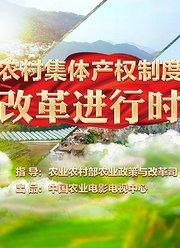 农村集体产权制度改革进行时