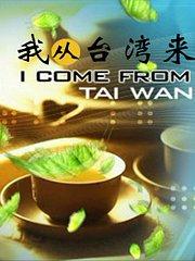 我从台湾来2009