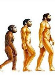 人类进化十大未解之谜
