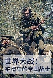 世界大战:被遗忘的帝国战士