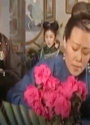 历史真实的建宁公主竟是康熙姑姑,因政治利益,嫁给了吴应熊