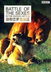 BBC动物恋爱也疯狂