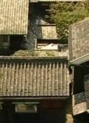 日本民居探秘:富商杉本家的大宅