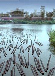 筑造北京城