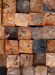 科学破奇案碎木缉凶-奥秘140717-纪实