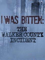 沃克郡神秘攻击事件