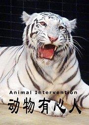 动物有心人