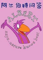 阿尔伯特问答