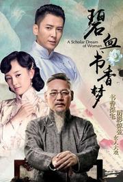 碧血书香梦TV版