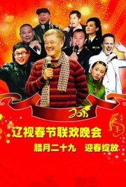 辽宁卫视2011春节联欢晚会