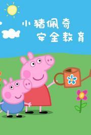 小猪佩奇之安全教育系列