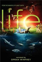 生命的故事第2季