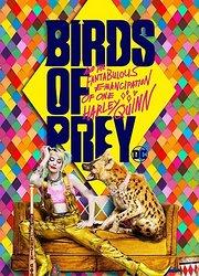 《猛禽小队和哈莉·奎茵》新预告